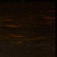 V-005 | Dark Wood
